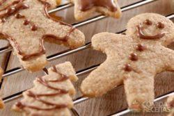 Biscoitinho de natal diet