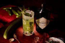Catnip & cucumber cooler