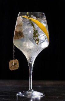 Gin tônica especial