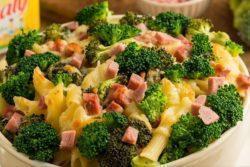 Macarrão gratinado com presunto e brócolis